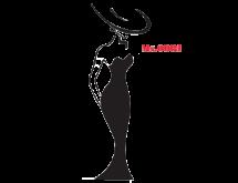 Логотип Odri